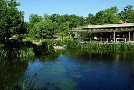 D a de puertas abiertas en el jard n bot nico atl ntico for El jardin botanico gijon
